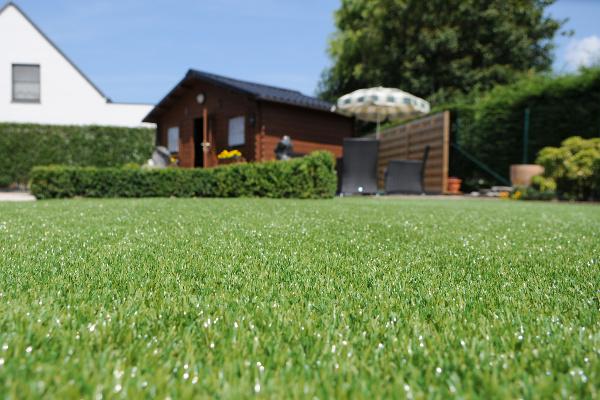 Barking-Grass-Image