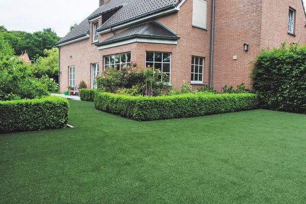 Downton-Grass-Lawn